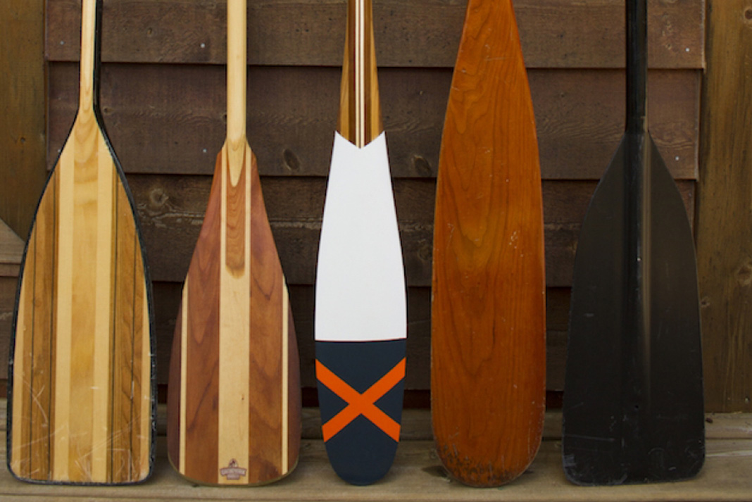 Canoe paddles lined up