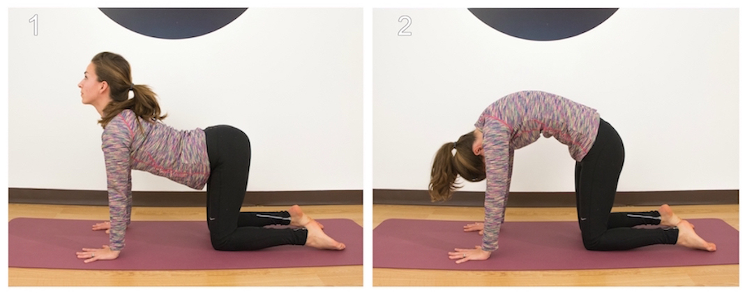 Left: woman doing cow pose. Right: woman doing cat pose