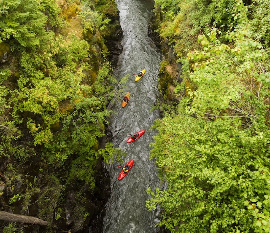 Aerial shot of four kayakers floating down a river through a forest.