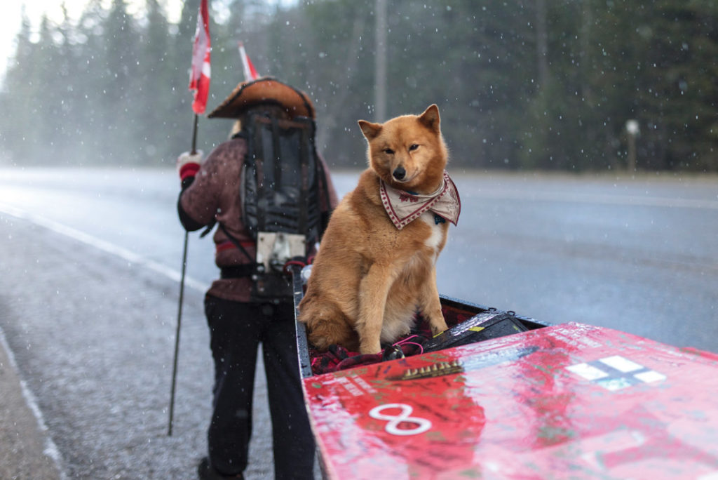 man walking down the road with his canoe and dog