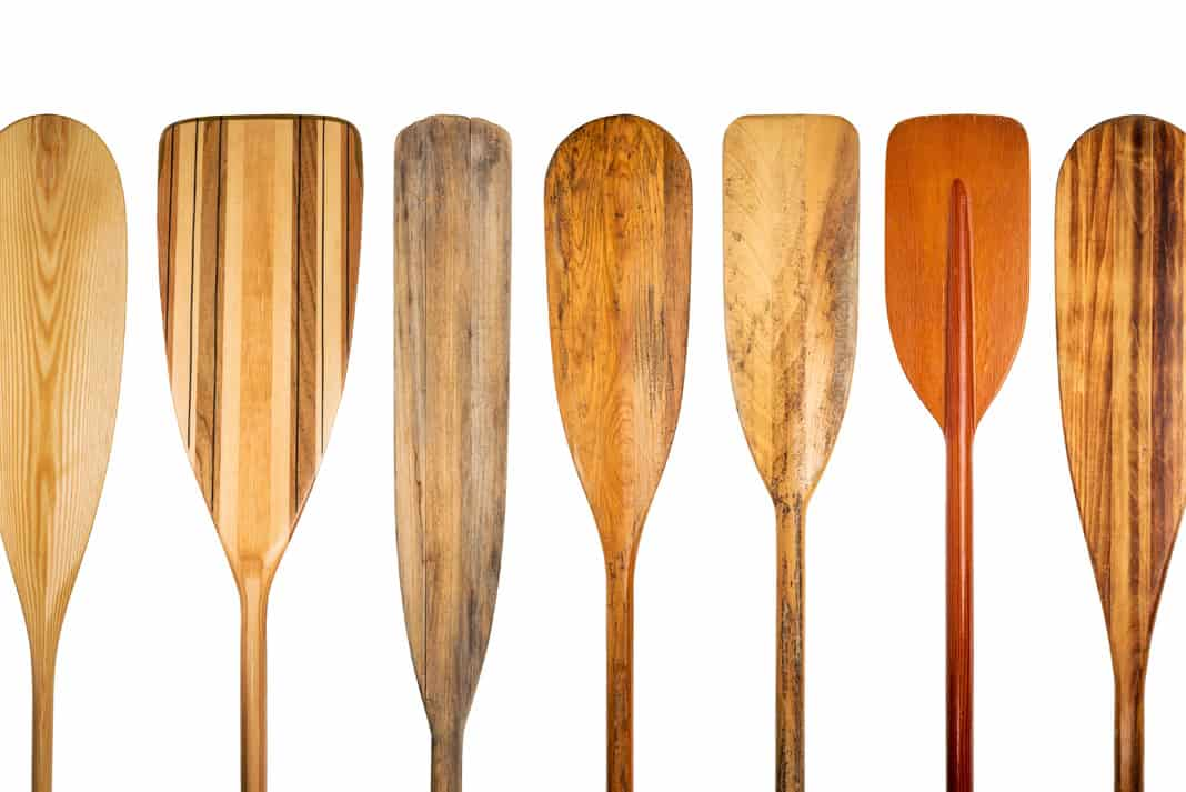 several wooden and ash canoe paddles lined up