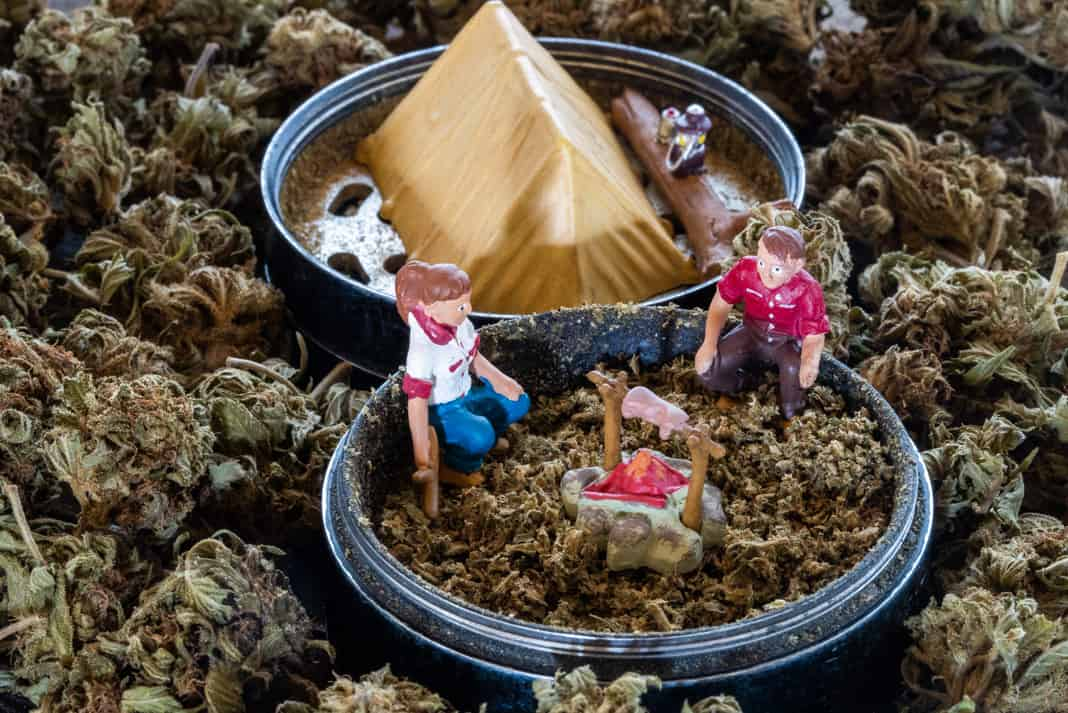 a grinder filled with cannabis and small characters camping