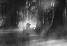 a man on his kayak photographing a swamp in Louisiana's Atchafalaya Basin