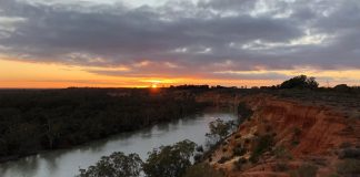 Passing through three states—New South Wales, Victoria, and South Australia—the Murray boasts a wealth of historical towns, first-rate wine regions and wilderness areas. | Photo: Jessica Wynne Lockhart