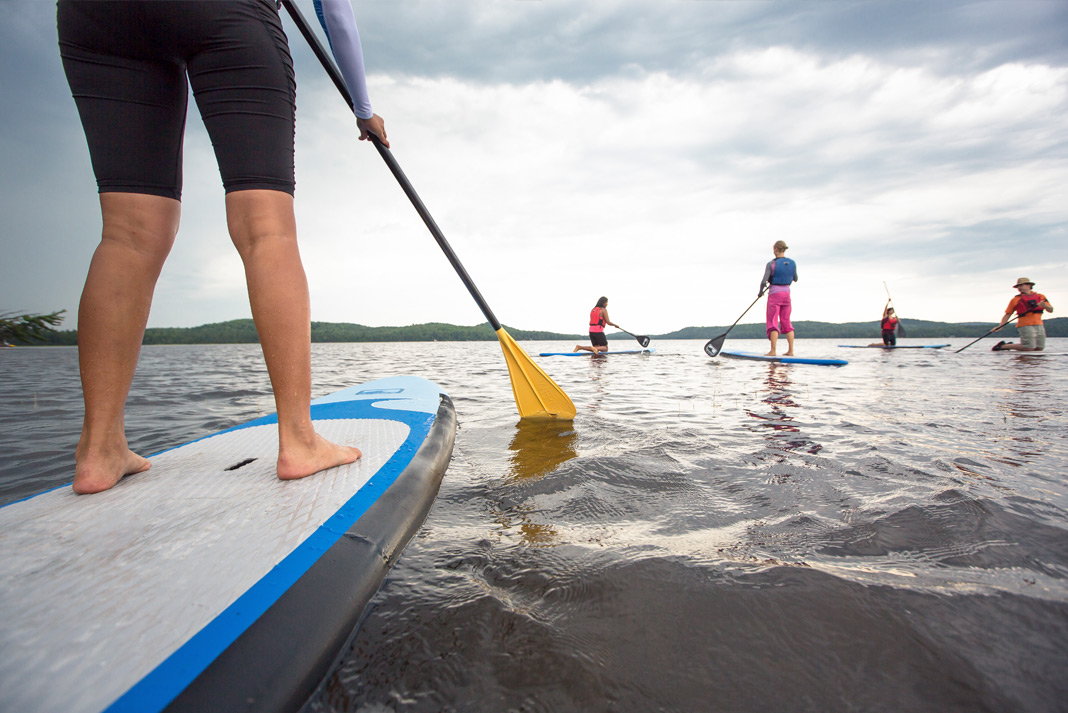 Several people on paddleboards