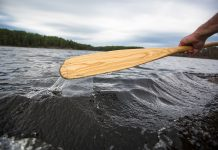 Paddle in the water