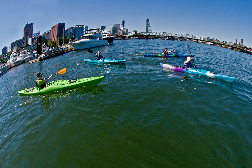 Kayakers on the water outside of a city