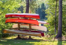 Behold: the family diy canoe tree. | Photo: Michael Hewis