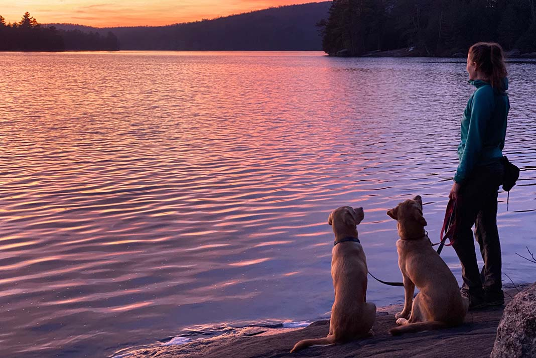 A woman stands with two dogs overlooking sunset in Rock Lake Algonquin Park
