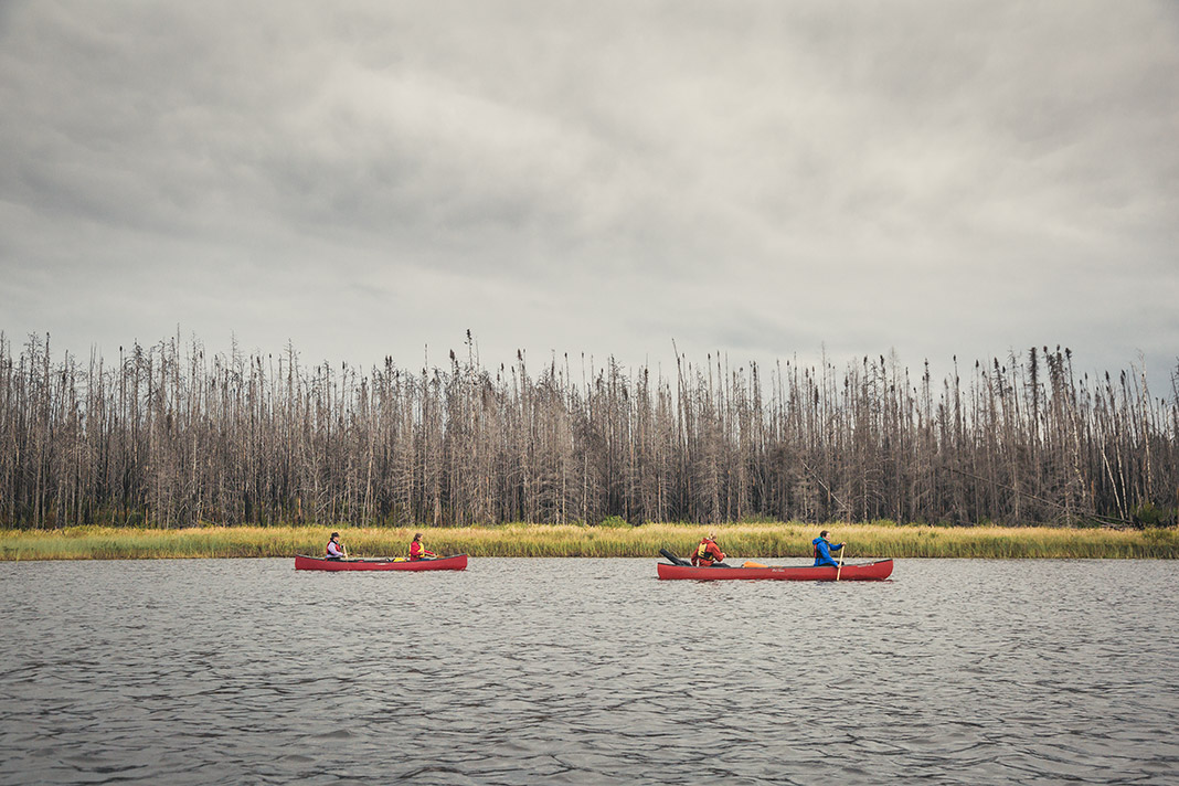 Two red canoes paddling on a lake with remains of forest fire in background