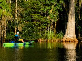 kayak angler fishing in St. Marks Florida
