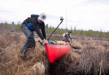 Canoe fisherman pulls canoe through bog