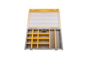 Case with dividers for tackle