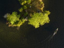 Overhead shot of kayak being paddle beside an island