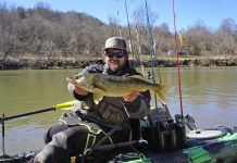This trophy walleye was one of Dolin's toughest challenges.   Photo: Josh Dolin